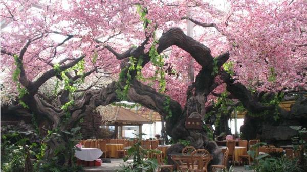 大连生态园仿真树